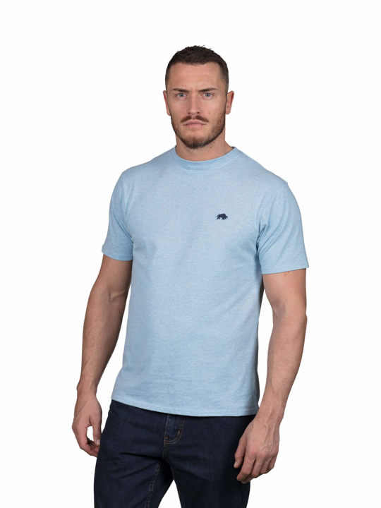 Model wearing High quality sky Blue T-Shirt